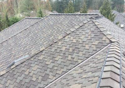 Presidential Roof
